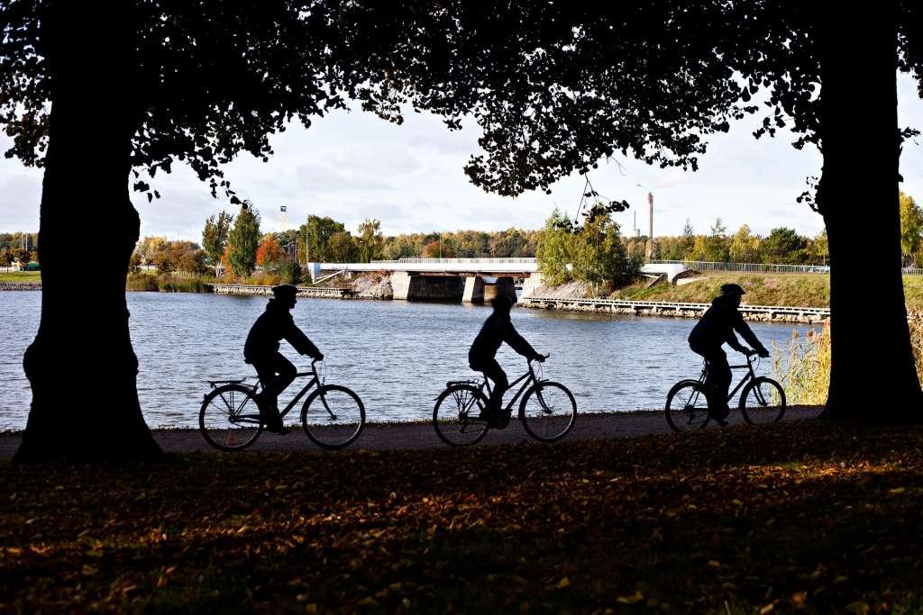 pyöräilijät varjossa