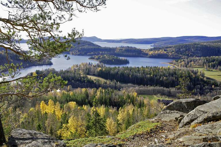 Autumn colours in the High Coast, which forms a joint World Heritage Site with the Kvarken Archipelago.