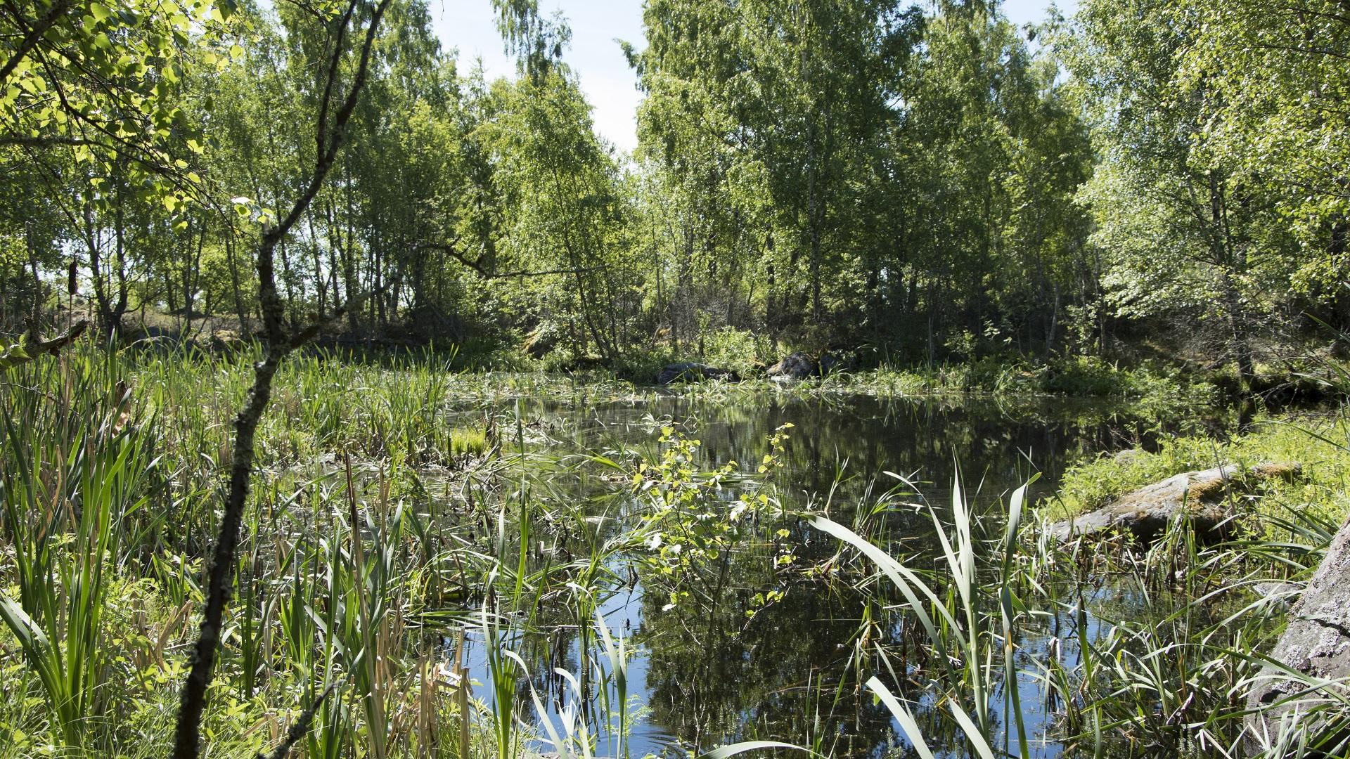 Fladat ja kluuvijärvet ovat kuin paratiisin laguuneja.