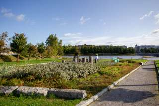 Bergmaninpuisto