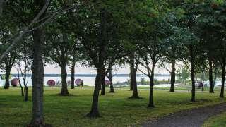 Lindparken (Kronomagasinsparken)