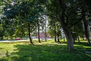 Wolffinpuisto