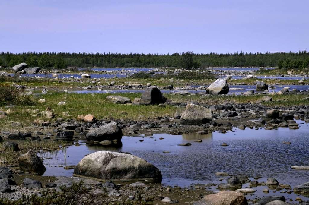 Landhöjningen skapar nytt land varje år i den grunda Kvarkens skärgård.