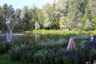 Tammikaivonpuisto