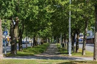 Korsholmanpuistikko