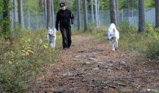 Gerbyn koirapuisto
