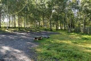 koirapuisto
