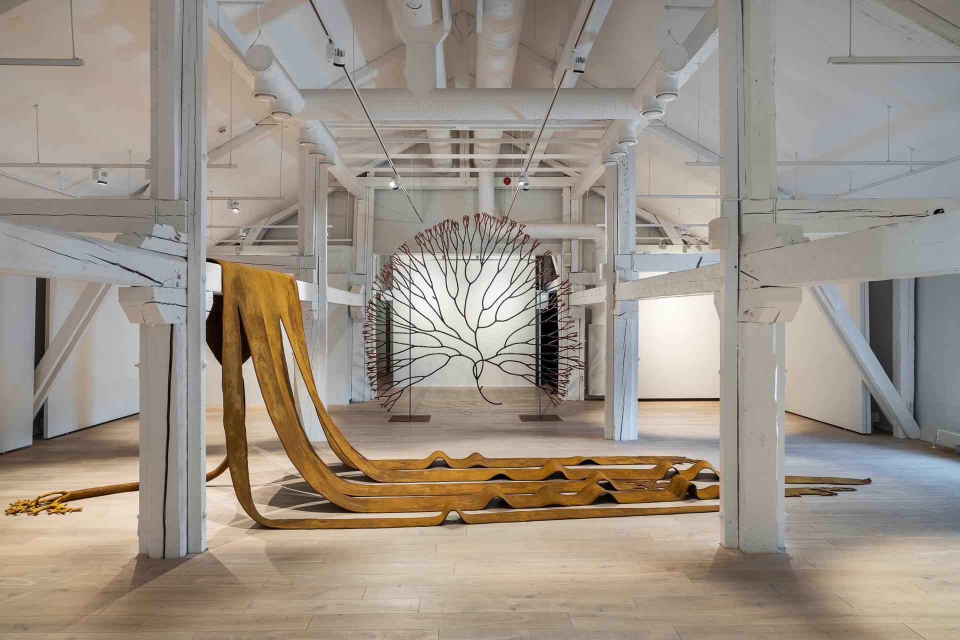 Taidemuseon sisätila