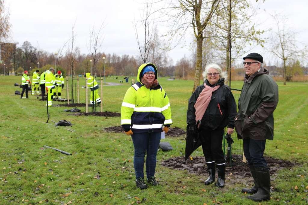 Leila Roininen sekä Raija ja Vesa Bono seisovat juuri istutetun kirsikkapuun juurella